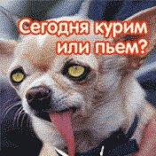Антон Мельник, 27 июля 1989, Донецк, id30086489